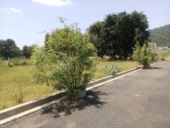 6976 sqft, Plot in Builder Project Vadavalli, Coimbatore at Rs. 64.0000 Lacs