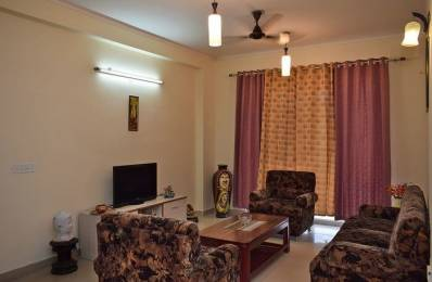 1850 sqft, 4 bhk BuilderFloor in Orchid Island Sector 51, Gurgaon at Rs. 1.3500 Cr
