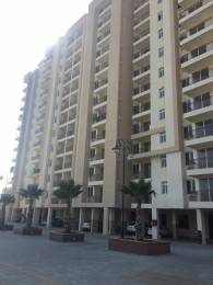 1600 sqft, 3 bhk Apartment in Ashiana Greens Sikar Road, Jaipur at Rs. 42.9000 Lacs