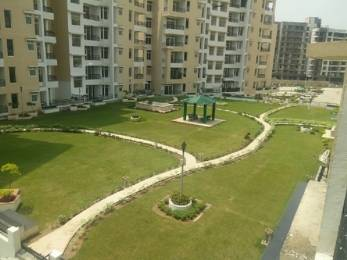 1160 sqft, 2 bhk Apartment in Builder Project Kharar Mohali, Chandigarh at Rs. 44.0000 Lacs