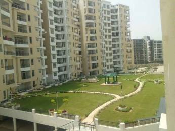 1684 sqft, 3 bhk Apartment in TDI Wellington Heights Sector 117 Mohali, Mohali at Rs. 60.0000 Lacs