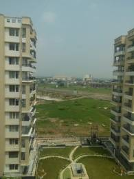 2250 sqft, Plot in TDI Wellington Heights Sector 117 Mohali, Mohali at Rs. 52.0000 Lacs