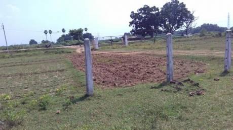 1361 sqft, Plot in Builder Project Parsa, Patna at Rs. 7.0000 Lacs