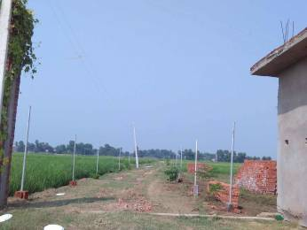 1361 sqft, Plot in Builder Project Phulwari sharif, Patna at Rs. 12.9200 Lacs