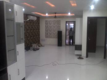 2400 sqft, 3 bhk Apartment in Builder Project Jubilee Hills, Hyderabad at Rs. 55000