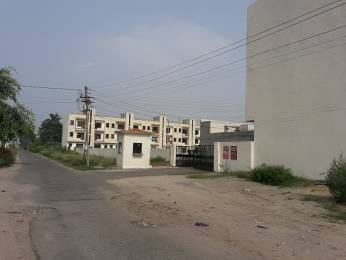 220 sqft, Plot in Builder Palli hill society Jalandhar Bypass Road, Jalandhar at Rs. 5.5000 Lacs