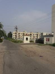 220 sqft, Plot in Builder palli hill gated colony Salempur, Jalandhar at Rs. 5.5000 Lacs