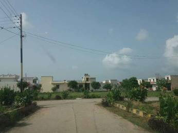 1425 sqft, Plot in Builder Khandala Farm Jalandhar Bypass Road, Jalandhar at Rs. 6.9000 Lacs