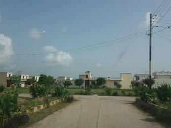 1422 sqft, Plot in Builder Khandala Farm Jalandhar Bypass Road, Jalandhar at Rs. 6.8800 Lacs