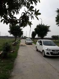 1830 sqft, Plot in Builder Khandala Farm Jalandhar Bypass Road, Jalandhar at Rs. 10.6100 Lacs