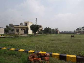 1854 sqft, Plot in Builder Khandala Farm Jalandhar Bypass Road, Jalandhar at Rs. 10.8000 Lacs