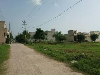 1860 sqft, Plot in Builder Khandala Farm Jalandhar Bypass, Jalandhar at Rs. 10.8000 Lacs