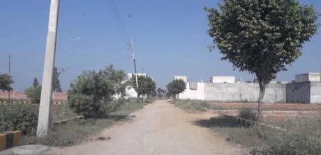 1170 sqft, Plot in Builder Khandala Farm Jalandhar Bypass Road, Jalandhar at Rs. 6.8000 Lacs