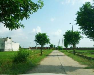 1860 sqft, Plot in Builder Khandala Farm Jalandhar Bypass Road, Jalandhar at Rs. 10.8000 Lacs