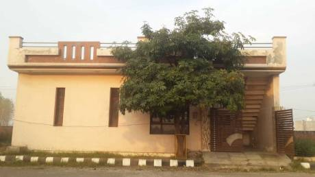 1035 sqft, 2 bhk IndependentHouse in Builder amrit vihar colony Jalandhar Bypass Road, Jalandhar at Rs. 20.0000 Lacs