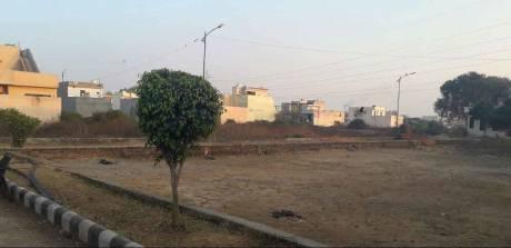 1800 sqft, Plot in Builder venus valley Jalandhar Bypass Road, Jalandhar at Rs. 17.4000 Lacs
