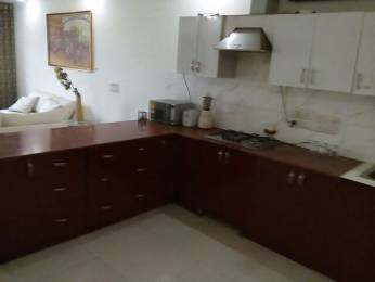 950 sqft, 2 bhk Apartment in Builder Project Freedom Fighter Enclave, Delhi at Rs. 18000