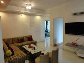 1200 sqft, 2 bhk Apartment in Property NCR Indirapuram Builder Floors Indirapuram, Ghaziabad at Rs. 14000