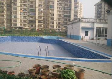 1600 sqft, 3 bhk Apartment in Shipra Royal Tower Shipra Suncity, Ghaziabad at Rs. 19000