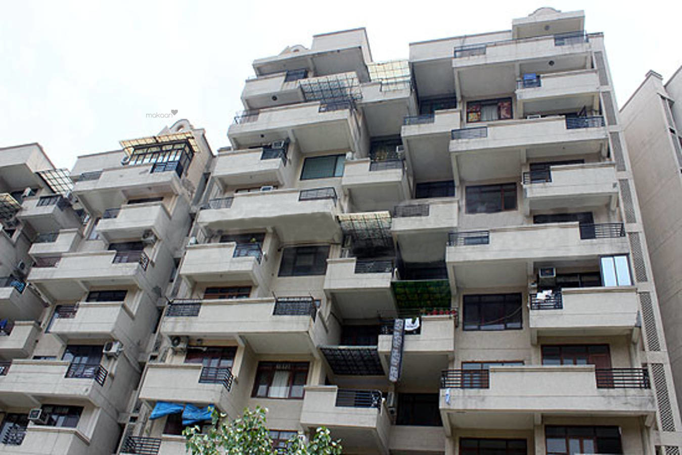 1650 sq ft 3BHK 3BHK+3T (1,650 sq ft) + Servant Room Property By Property Space In Youngsters, Sector 6 Dwarka