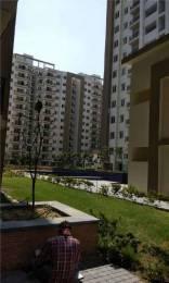 1245 sqft, 2 bhk Apartment in Umang Winter Hills Shanti Park Dwarka, Delhi at Rs. 95.0000 Lacs