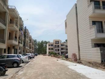 1350 sqft, 3 bhk BuilderFloor in Builder Bella homes Focal Point, Dera Bassi at Rs. 31.0000 Lacs