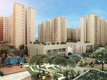 800 sqft, 2 bhk Apartment in Mahima Sansaar Phase I Sitapura, Jaipur at Rs. 24.2000 Lacs
