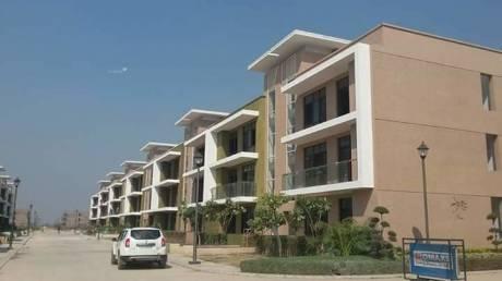 1725 sqft, 3 bhk BuilderFloor in Builder Omaxe new chandigarh New Chandigarh Mullanpur, Chandigarh at Rs. 60.0000 Lacs