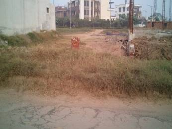 4500 sqft, Plot in Builder TDI Infrastructure City Plots 1 Sector 117 Mohali Mohali Sector 117 Mohali, Mohali at Rs. 1.5000 Cr