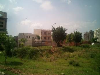1530 sqft, Plot in Builder TDI City Sector 74 A Mohali, Chandigarh at Rs. 50.0000 Lacs