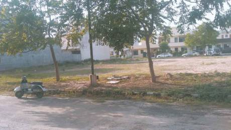 2250 sqft, Plot in Builder TDI Infrastructure City Plots 1 Sector 117 Mohali Mohali Sector 117 Mohali, Mohali at Rs. 70.0000 Lacs