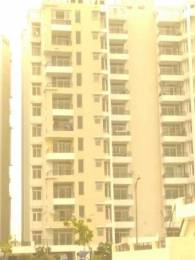 1771 sqft, 3 bhk Apartment in TDI Wellington Heights Extension Sector 118 Mohali, Mohali at Rs. 73.6500 Lacs