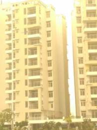 1849 sqft, 3 bhk Apartment in TDI Wellington Heights Extension Sector 118 Mohali, Mohali at Rs. 76.5500 Lacs