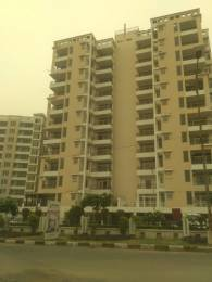 1260 sqft, 2 bhk Apartment in TDI Wellington Heights II Sector 117 Mohali, Mohali at Rs. 44.7500 Lacs