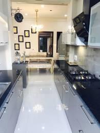 1850 sqft, 3 bhk Apartment in Suncity Parikrama Housing Complex Sector 20, Panchkula at Rs. 23000