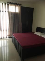 750 sqft, 1 bhk Apartment in Pearls Nirmal Chhaya Towers VIP Rd, Zirakpur at Rs. 11500