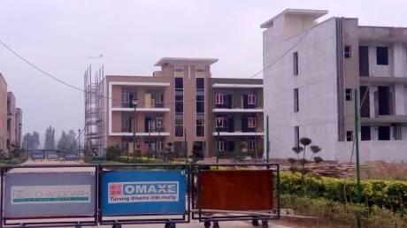 1725 sqft, 3 bhk BuilderFloor in Builder omaxe cassia floors New Chandigarh Mullanpur, Chandigarh at Rs. 56.5000 Lacs