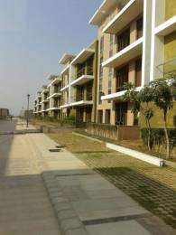 1725 sqft, 3 bhk IndependentHouse in Omaxe Cassia Mullanpur, Mohali at Rs. 40.0000 Lacs