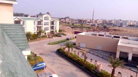 1180 sqft, 3 bhk BuilderFloor in Omaxe Silver Birch Mullanpur, Mohali at Rs. 40.5000 Lacs
