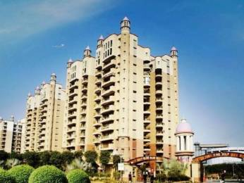 2100 sqft, 3 bhk Apartment in Omaxe The Nile Sector 49, Gurgaon at Rs. 1.7600 Cr