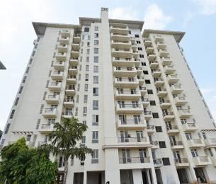 1020 sqft, 2 bhk Apartment in Emaar Emerald Estate Sector 65, Gurgaon at Rs. 75.0000 Lacs