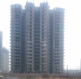 1050 sqft, 2 bhk Apartment in Victory Amara Sector 16 Noida Extension, Greater Noida at Rs. 31.2900 Lacs