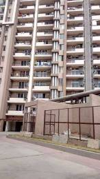1093 sqft, 2 bhk Apartment in RG Residency Sector 120, Noida at Rs. 55.0000 Lacs