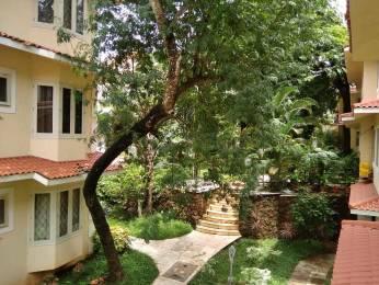 1184 sqft, 2 bhk BuilderFloor in Builder Project Siolim, Goa at Rs. 35000
