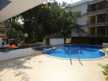 538 sqft, 1 bhk BuilderFloor in Builder Project Anjuna, Goa at Rs. 20000