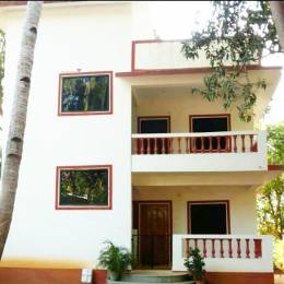 1507 sqft, 3 bhk BuilderFloor in Builder Project Candolim, Goa at Rs. 30000