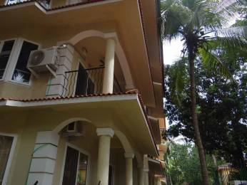 538 sqft, 1 bhk Apartment in Builder Project Nagoa, Goa at Rs. 20000