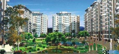 1402 sqft, 2 bhk Apartment in Corona Optus Sector 37C, Gurgaon at Rs. 18000