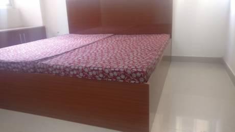 2450 sqft, 4 bhk Apartment in BPTP Park Serene Sector 37D, Gurgaon at Rs. 25000