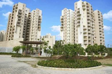 1615 sqft, 2 bhk Apartment in BPTP Park Serene Sector 37D, Gurgaon at Rs. 18500